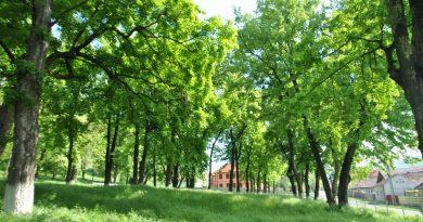 Parcul Localitații
